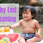Baby Led Weaning, First Foods For Baby