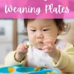 Best Baby Led Weaning Plates